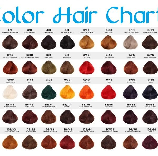 color hair chart