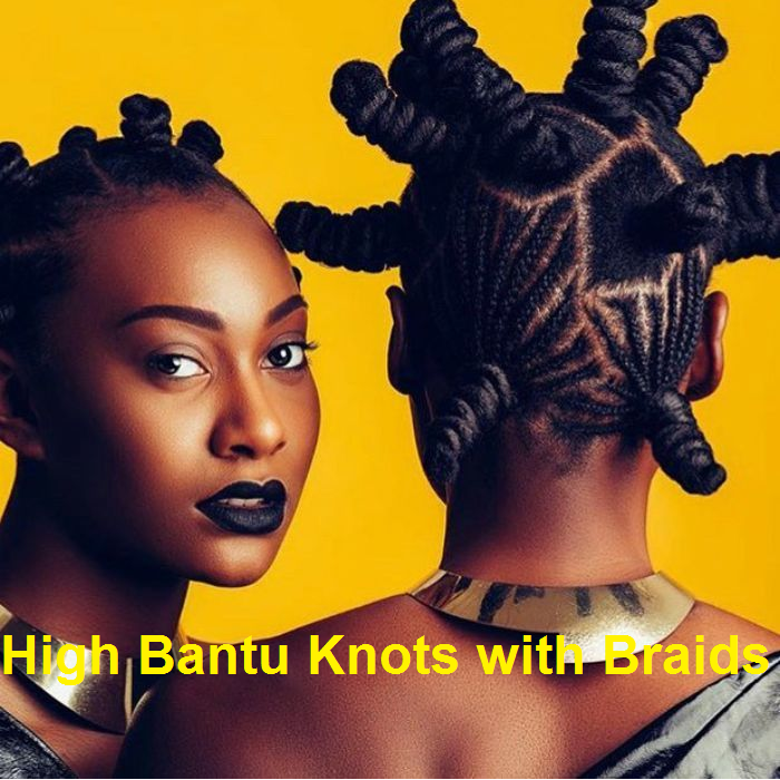 high bantu knots with braids