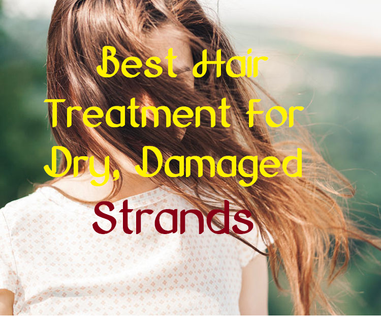 best hair treatment for dry, damaged strands