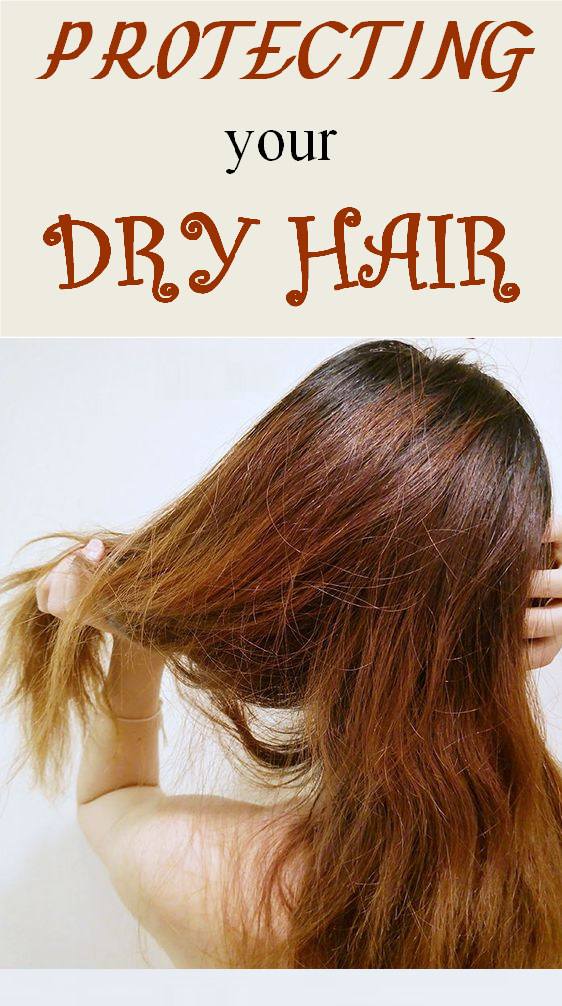 protecting your dry hair