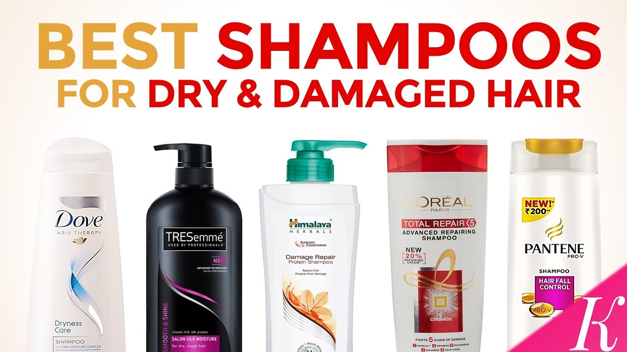 best shampoos for dry & damaged hair