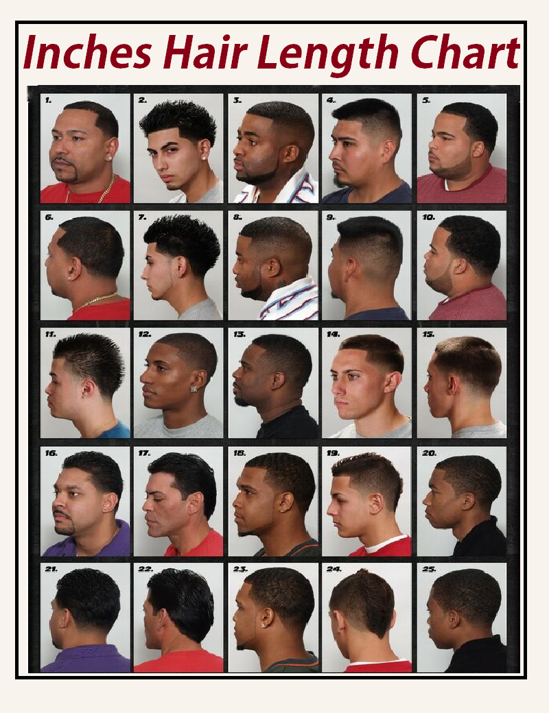 inches hair length chart